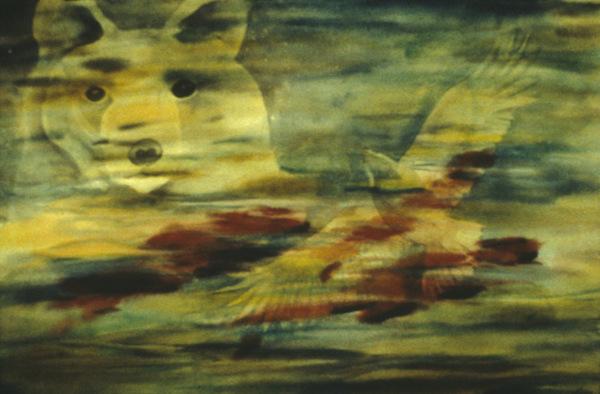 Jacqui Lown ~ Calling Salmon