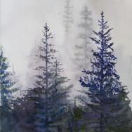 Mist Missed